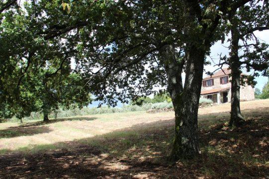 Casa das Vinhas